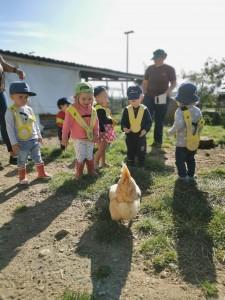 Album: Visite à la ferme | Image publiée le 24.09.19